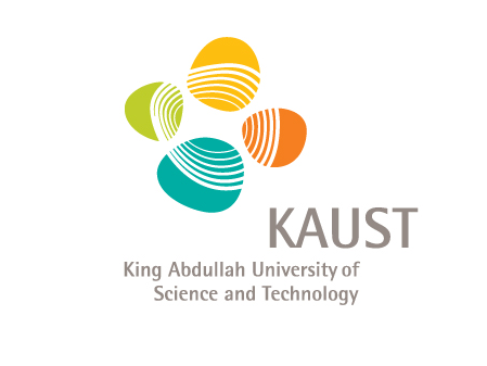 KAUST Physical Science and Engineering Division